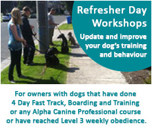 Refresher Day Workshops