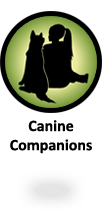 Alpha Canine Companions - highly trained companion dogs for sale