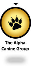 YOU ARE HERE: The Alpha Canine Group - offering a complete selection of canine training services